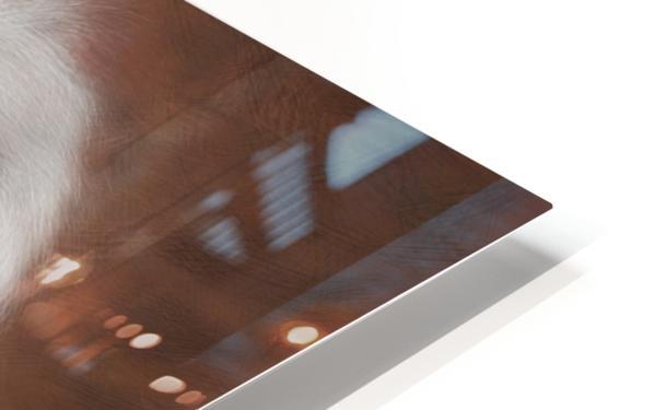 Jonessium V1 - the legend HD Sublimation Metal print