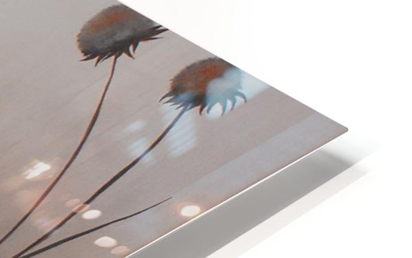 Cardinals HD Sublimation Metal print