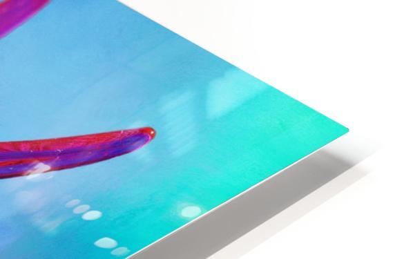 Glass Bird Abstract  HD Sublimation Metal print