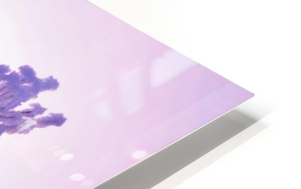 Pink tint HD Sublimation Metal print