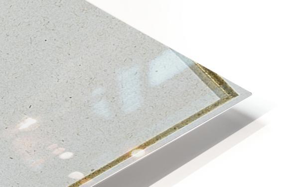 Arab sentinel HD Sublimation Metal print