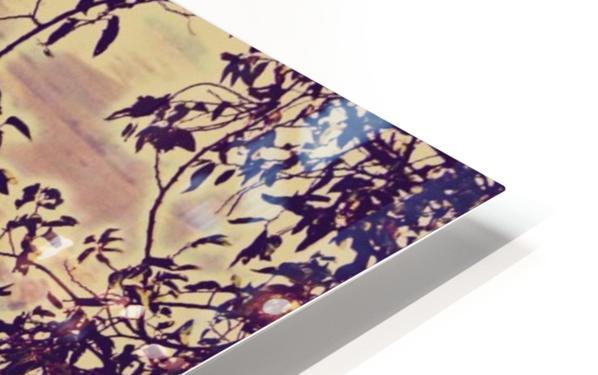 prayingrock HD Sublimation Metal print