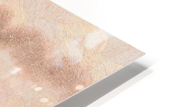Danish paddle steamer HD Sublimation Metal print