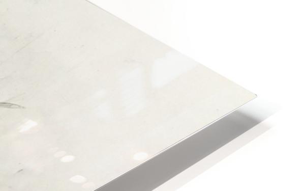 Snowdrops HD Sublimation Metal print