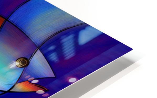 Cassanella - dream fish HD Sublimation Metal print