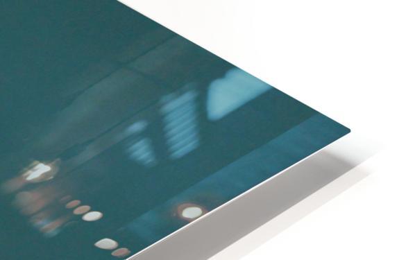 American Kestrel HD Sublimation Metal print