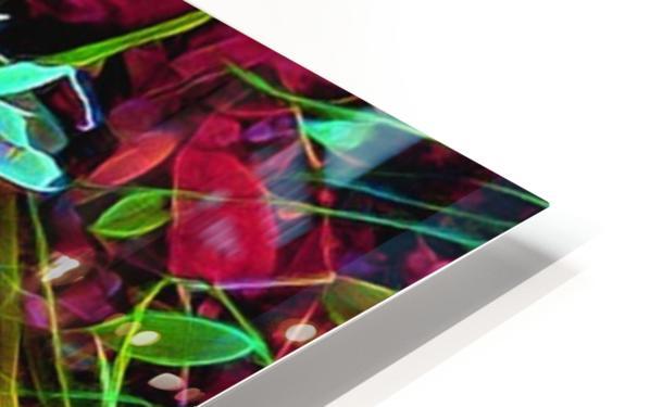 radiantplant HD Sublimation Metal print