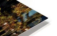 Egret HD Metal print