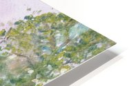 Pine reflections. HD Metal print