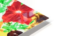 red flower and yellow flower with green leaf abstract background HD Metal print