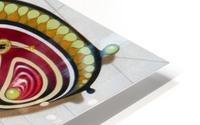 butterfly from the twenties HD Metal print