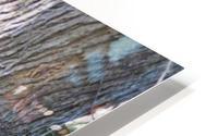 DSC_0223 HD Metal print
