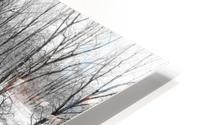 Reflexion HD Metal print