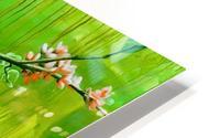 Green Spring HD Metal print