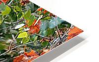 AutumnEagle HD Metal print