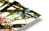 A (8) HD Metal print