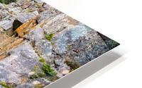 Poudre River Colorado Impression metal HD