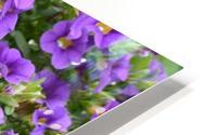 Beautiful Purple Flowers Photograph HD Metal print
