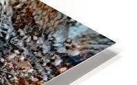 Frozen HD Metal print