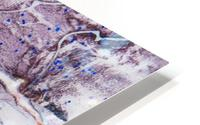 Sophia Cinq HD Metal print