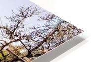 Niedernsill Landscape Austrian Alps HD Metal print