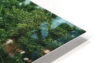 Rainforest Canopy HD Metal print