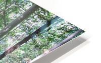 Landscape (166) HD Metal print