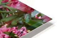 Flower HD Metal print