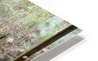 Deer HD Metal print
