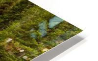 Periodic Spring Flowing into Swift Creek HD Metal print
