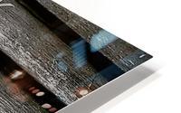 Garden tool vines HD Metal print
