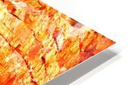 Surviving - Ormiston Gorge HD Metal print