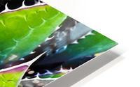Thorny HD Metal print