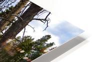 Sprague Lake HD Metal print