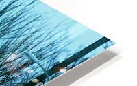 Frost HD Metal print