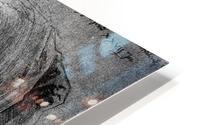 Agnes Durer in Dutch Tracht HD Metal print