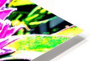 pink protea HD Metal print