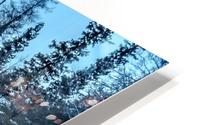River and snow HD Metal print