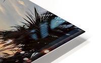 Eleuthera Sunrise on the Hammock HD Metal print