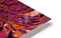 Velvet Spring Flower HD Metal print