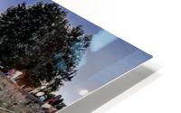 _TEL3384 Edit HD Metal print