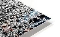 Afridaizy Black & White Trees Threshold029 HD Metal print