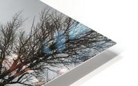 The Cabin HD Metal print