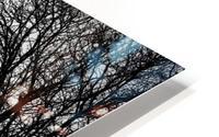 Pere Lachaise HD Metal print