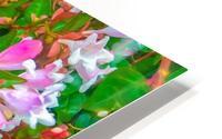 closeup blooming pink flowers with green leaves HD Metal print