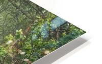 Enchanted HD Metal print