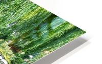 Refreshing Summer - the Little Fisherman Fountain Cheerfully Splashing in the Sunshine HD Metal print