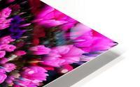 Getting Lost in Pink HD Metal print