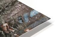 Soo Caboose in Fresh Snow HD Metal print