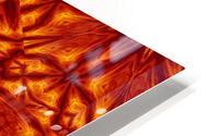 Fire Flowers 207 HD Metal print